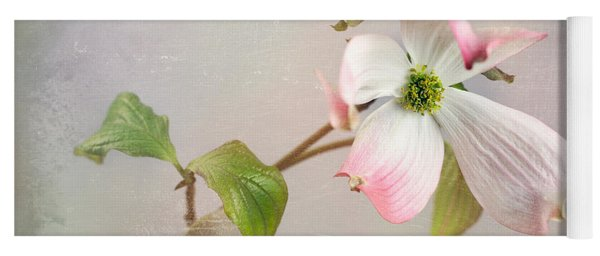 Pink Cornus Kousa Dogwood Blossom Yoga Mat