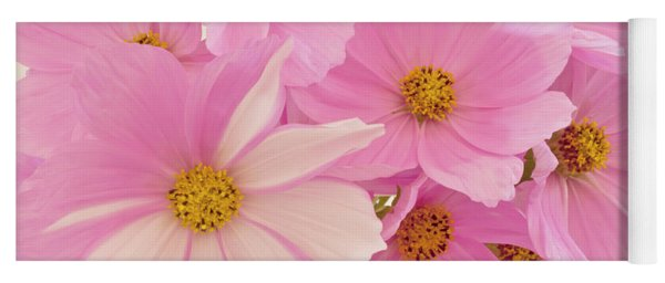 Pink Cosmos Sonata  Yoga Mat