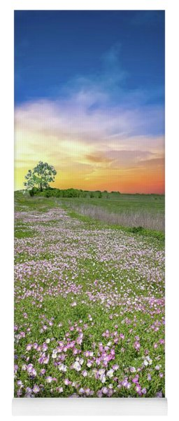 Yoga Mat featuring the photograph Pink Evening Primrose Sunset by Lynn Bauer