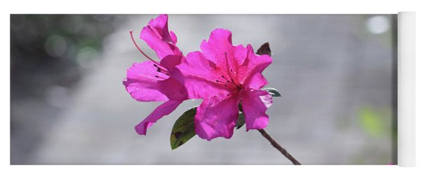 Pink Flowers Yoga Mat
