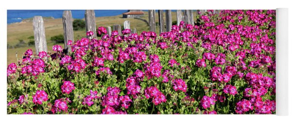 Pink Geraniums At Stewarts Point  Yoga Mat