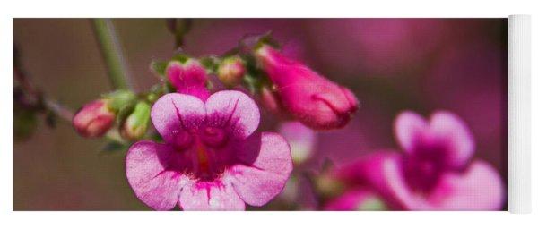 Pink Parry's Penstemon  Yoga Mat
