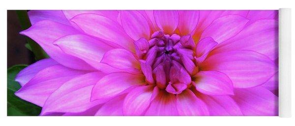 Pink Purple Dahlia Flower Yoga Mat