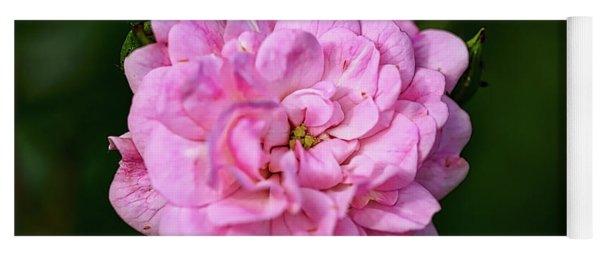 Pink Rose Petals Yoga Mat