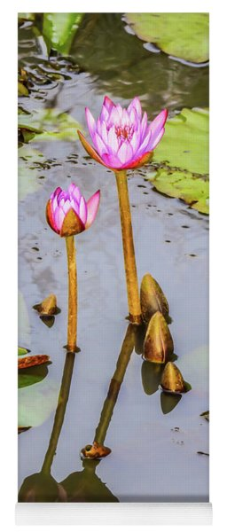 Pink Water Lilies In A Pond Yoga Mat