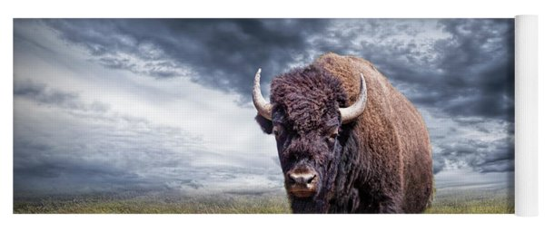 Plains Buffalo On The Prairie Yoga Mat