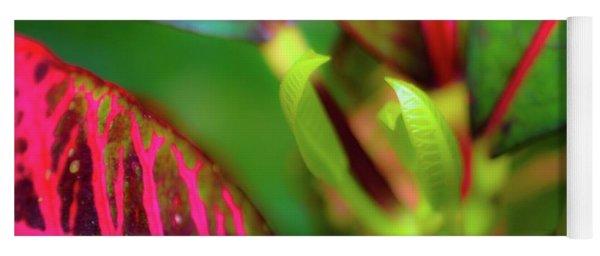 Plants In Hawaii Yoga Mat