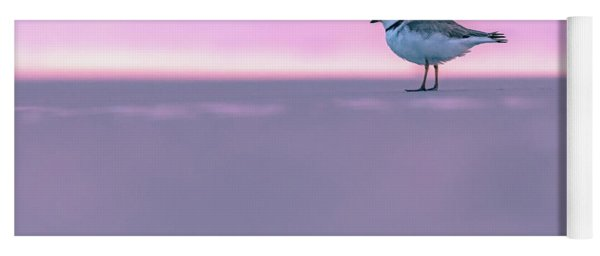 Plover At Sunrise Yoga Mat