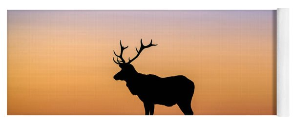 Point Reyes Elk Yoga Mat