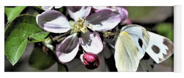 Pollinating The Apple Blossoms Yoga Mat