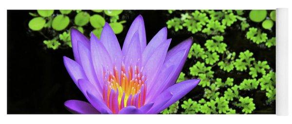 Pond Beauty Yoga Mat