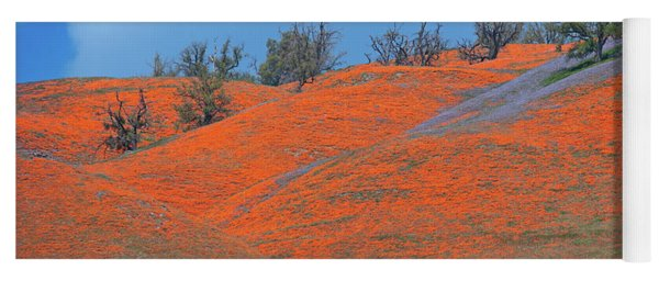 Yoga Mat featuring the photograph Poppy Paradise At The Top Of Tejon Pass by Lynn Bauer
