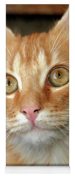 Portrait Of A Cat Yoga Mat