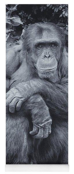 Portrait Of A Chimp Yoga Mat