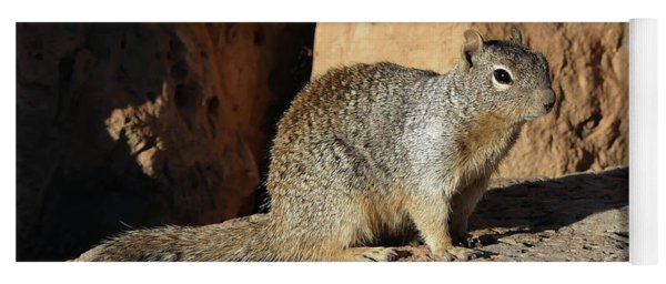Posing Squirrel Yoga Mat