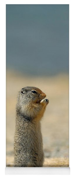 Prairie Dog Yoga Mat