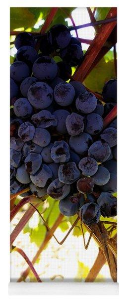 Praying Mantis - Tuscany Wine Region, Italy Yoga Mat