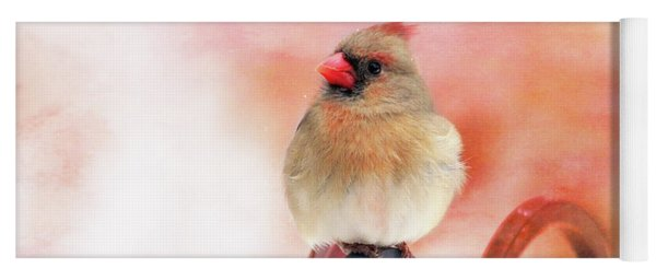 Pretty Cardinal Yoga Mat