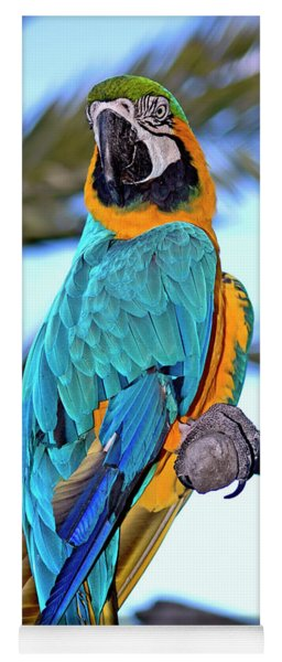 Pretty Parrot Yoga Mat