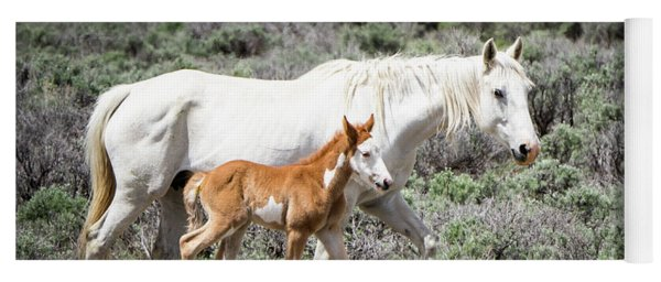 Yoga Mat featuring the photograph Pretty White Mustang Mare With Her New Foal - Sand  Wash Basin by Nadja Rider