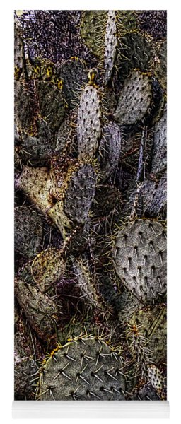 Prickly Pear Cactus At Tonto National Monument Yoga Mat
