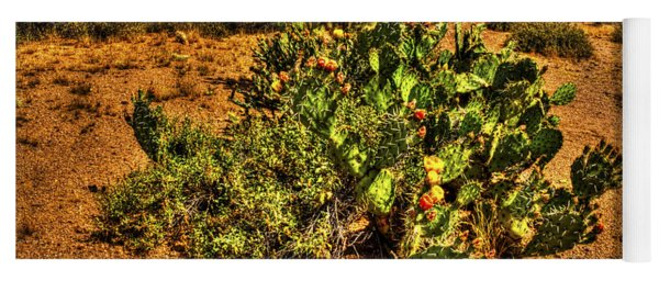 Prickly Pear In Bloom With Brittlebush And Cholla For Company Yoga Mat