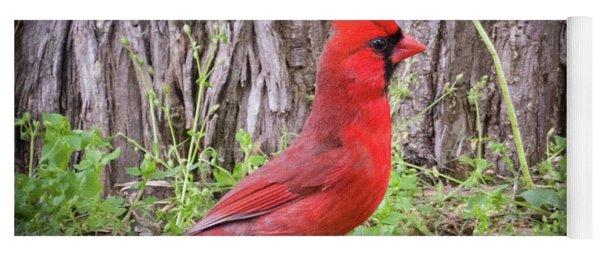 Proud Cardinal Yoga Mat