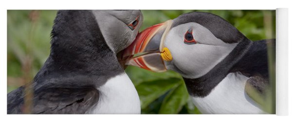 Puffin Love Yoga Mat