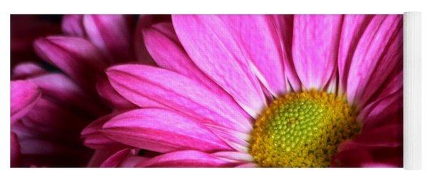 Purple Chrysanthemum Close-up Yoga Mat