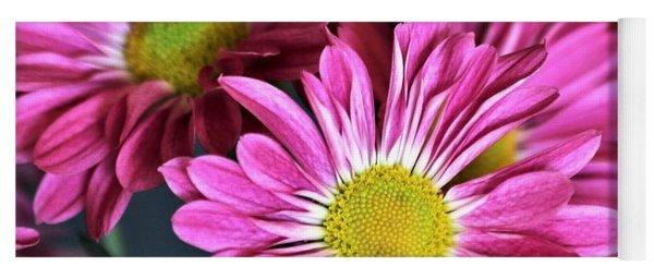 Purple Chrysanthemums Yoga Mat