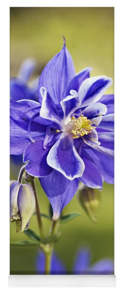 Purple Columbine Yoga Mat