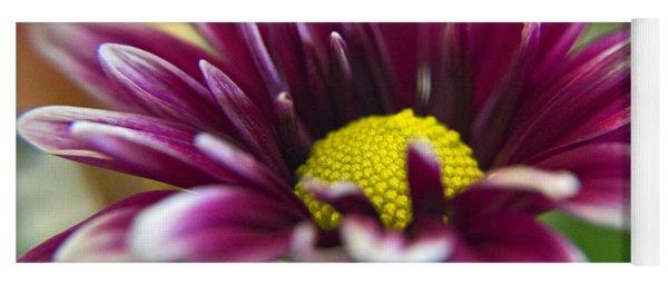 Purple Daisy Yoga Mat