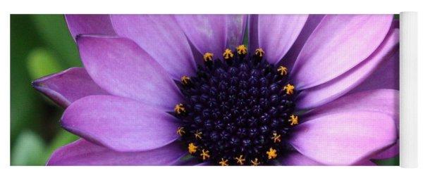 Purple Daisy Square Yoga Mat