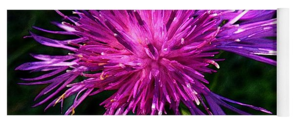 Purple Dandelions 4 Yoga Mat