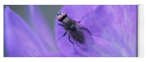 Purple Fly Yoga Mat