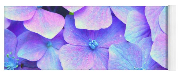 Purple Hydrangeas Yoga Mat