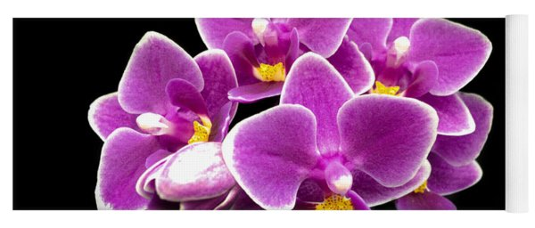 Purple Orchid Yoga Mat