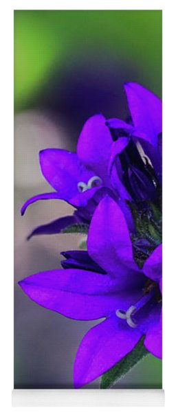 Yoga Mat featuring the photograph Purple Spring Flower by Cristina Stefan
