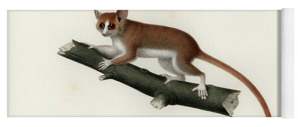 Pygmy Mouse Lemur Yoga Mat