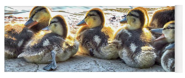 Quacklings Yoga Mat