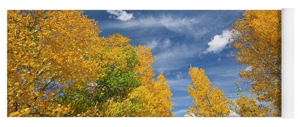 Quaking Aspens In Autumn Yoga Mat