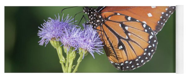 Queen Butterfly 7474-101017-1cr Yoga Mat