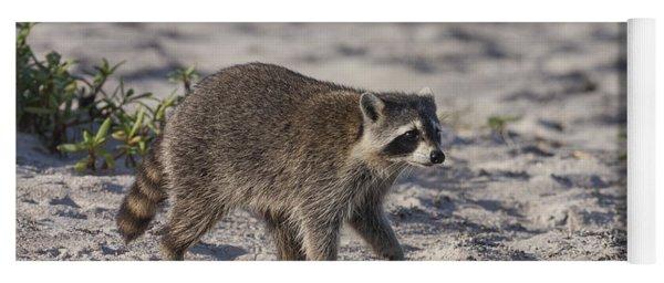 Raccoon On The Beach Yoga Mat