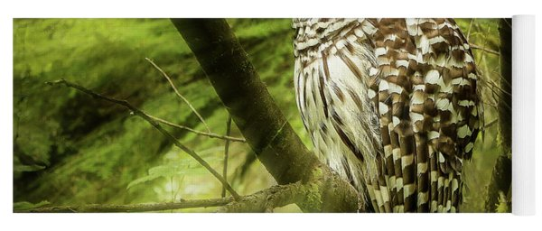 Radiating Barred Owl Yoga Mat
