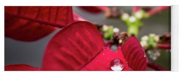Rain Drop On A Poinsettia  Yoga Mat
