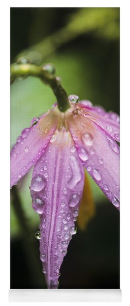 Yoga Mat featuring the photograph Rain Drops On Fawn Lily by Robert Potts