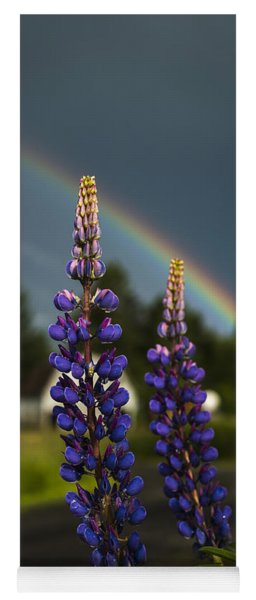 Rainbow Over Lupine  Yoga Mat