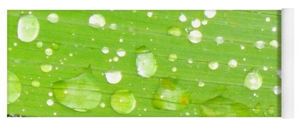 Raindrops On Leaf Yoga Mat