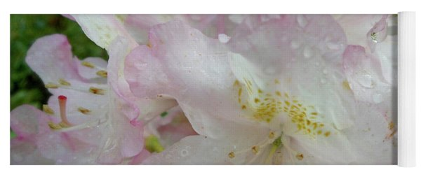 Raindrops On Rhododendron Yoga Mat