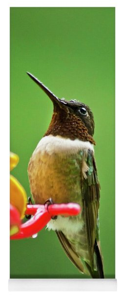 Rainy Day Hummingbird Yoga Mat